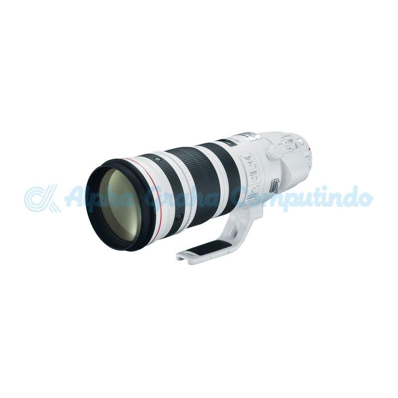 Canon  Lens EF 200-400mm f/4L IS USM Extender 1.4x
