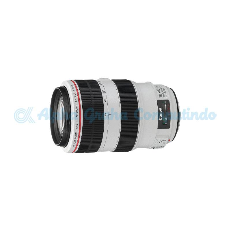 Canon  Lens EF 70-300 f4.5-5.6 DO ISU
