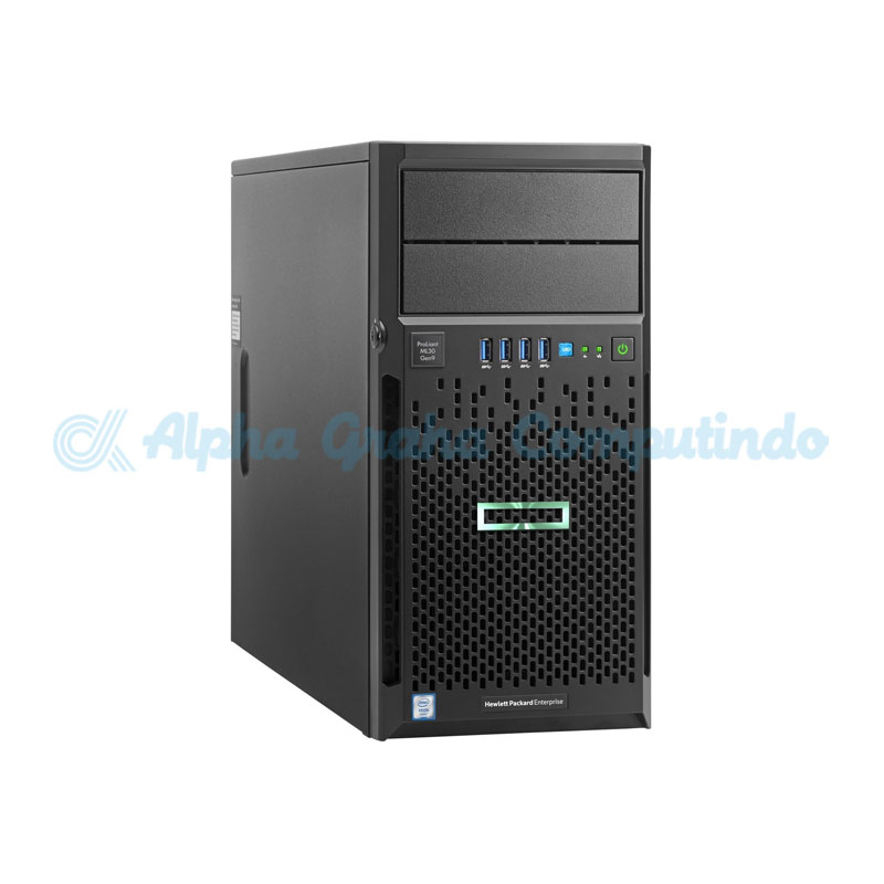 HPE  ProLiant ML30 G9 E3-1220v6 8GB 1TB [P03705-375]