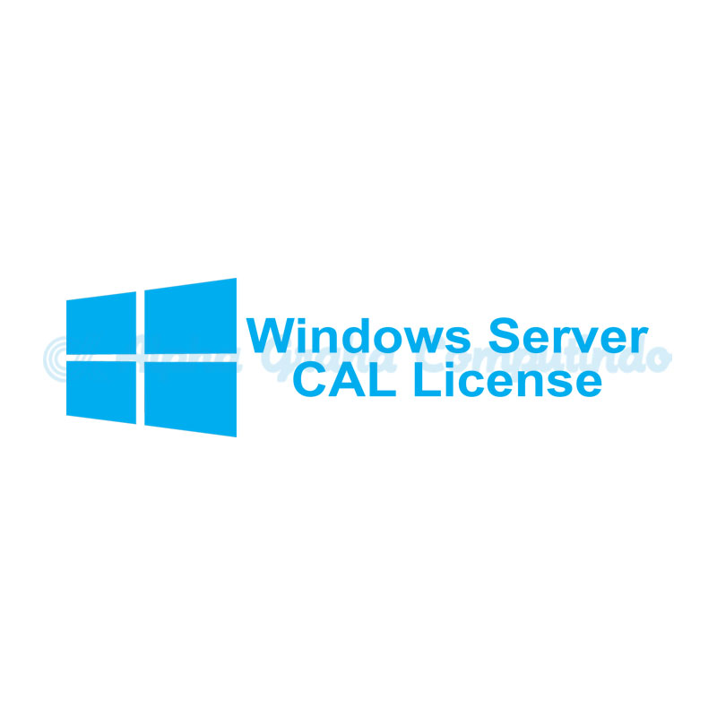 Microsoft [Windows Server CAL]ServerCAL License/SoftwareAssurancePack Government OLP 1License NoLevel UsrCAL[Government][R18-01633]
