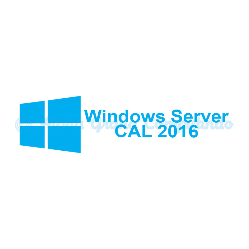 Microsoft [Windows Server CAL]Windows Server CAL 2016 Government OLP 1License NoLevel [Government][R18-05159]