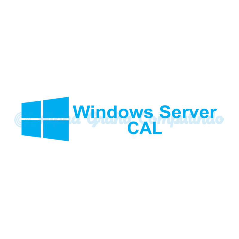 Microsoft [Windows Server CAL] WinSvrCAL SA OLP NL Gov UsrCAL [Pemerintah] [R18-01635]